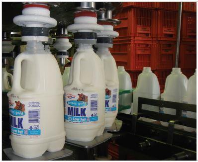 Orange Grove Dairy