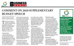 Nigel Ward - Comment on 2020 supplementary budget speech